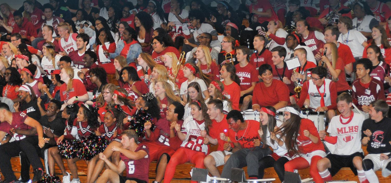 MLHS-banner-crowd.jpg